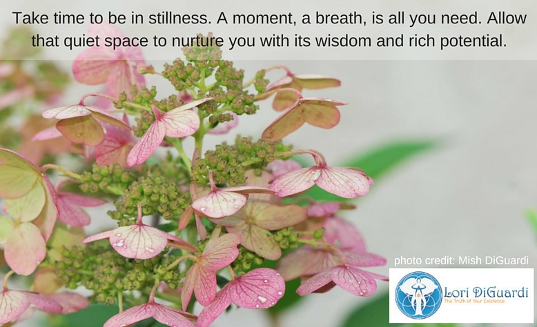 Time for Stillness is Time for Nurturing, Wisdom and Potential