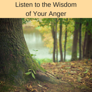 listen to the wisdom of your anger